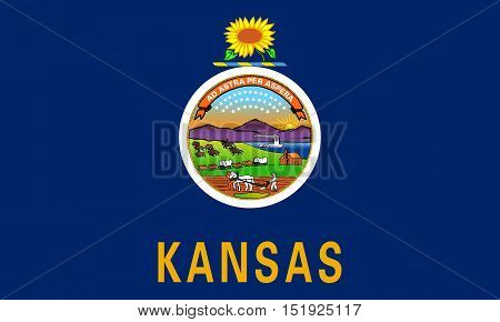 Kansan official flag symbol. American patriotic element. USA banner. United States of America background. Flag of the US state of Kansas in correct size and colors illustration