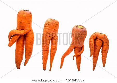 Unusual crop of carrots isolated on white background
