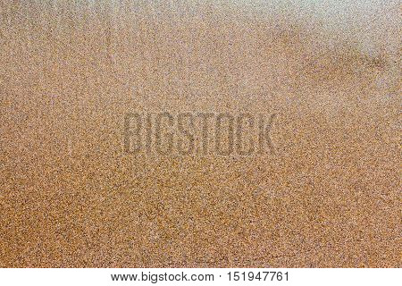 background from the wet Golden sand on the sun