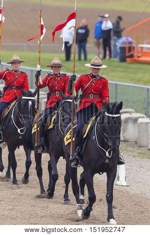 Rcmp Musical Ride In Ancaster, Ontario
