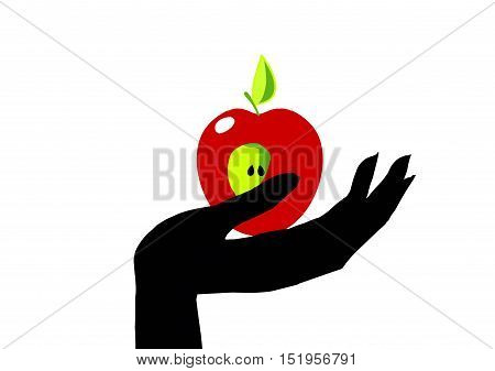 Vector illustration of an Apple.Symbolize the forbidden fruit or a healthy lifestyle