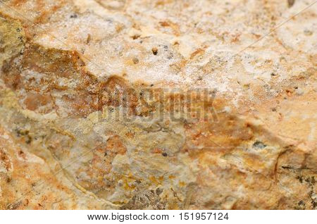 Close Up Texture Of Stone Background
