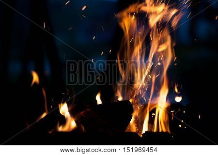 Beautiful fire on a picnic. The concept of nature.