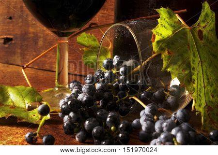 Closeup of wine and grape vine on wood.
