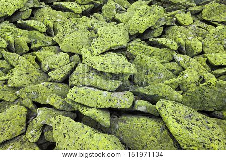 Ancient mountain rocks with green moss background
