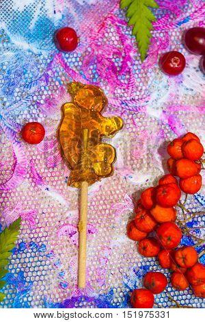 Lollipop Squirrel And Berries