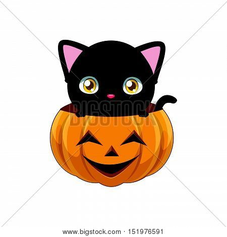 Cute Black Cat Peeking Out Of A Pumpkin