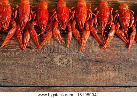Fresh boiled crayfish with dill on a wooden background. Top view.
