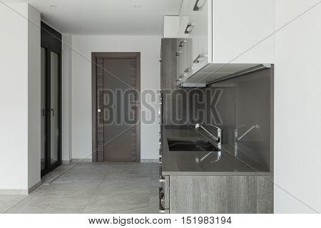Interior of empty apartment, modern kitchen