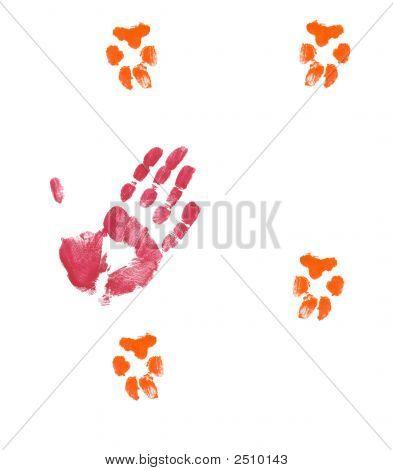 Hand Petting Dog