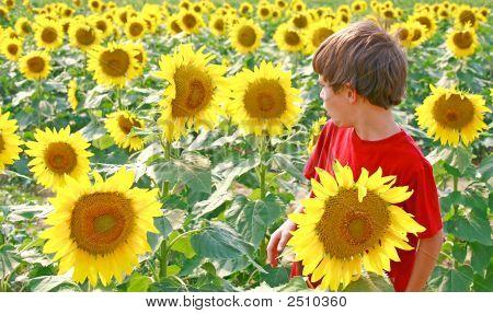Niño y hablar de la flor