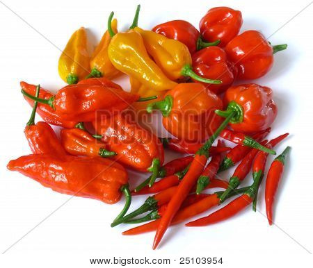 Some of the world's hottest chilies on white