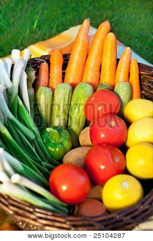Harvest Of Fresh Vegetables in a Basket edit