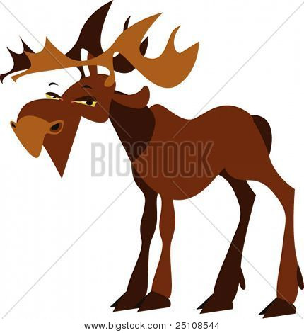 vector elk design: zoo series