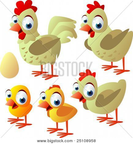 vector animal set 67: chicken, hen, rooster, egg