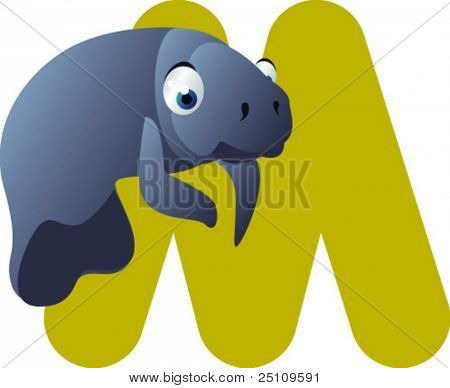 Newest ABC animals: M  is for  Manatee