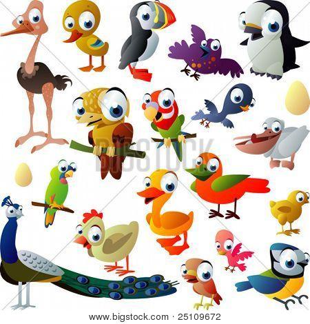 extra grande conjunto de aves