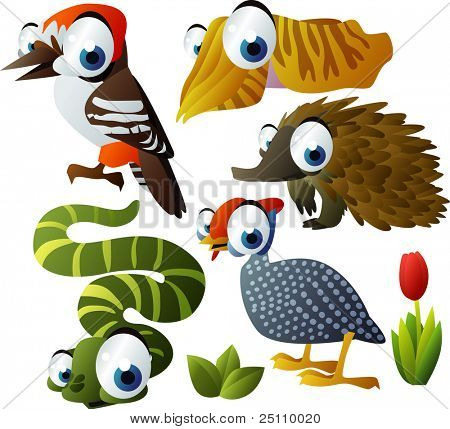 2010 animal set: woodpecker, echidna, cuttlefish, helmeted fowl, snake