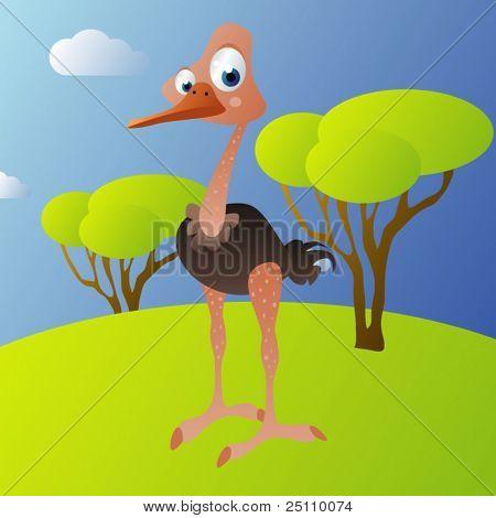 Vector avestruz
