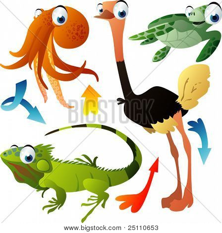 vector animals: octopus, ostrich, turtle, iguana