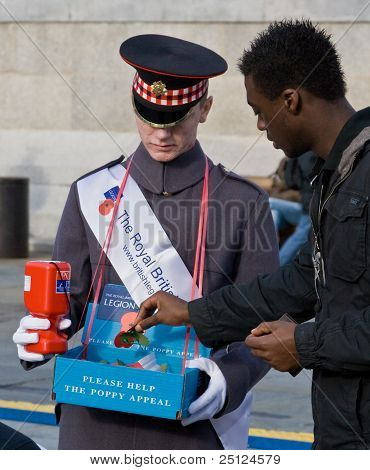 A Poppy Appeal Volunteer Selling Poppies On Armistice Day Near The Cenotaph, Whitehal, London.