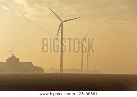 Dawn and agriculture