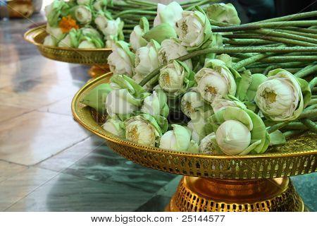 Sacrificial flowers