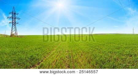 Spring Field Morning Panorama With Blue Sky And Sunshine