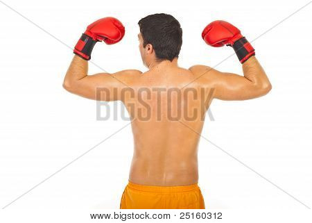 Back Of Powerful Boxer Man