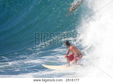 Surferbigwave