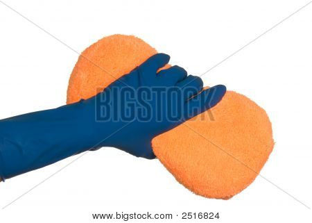 Gloves And Sponge
