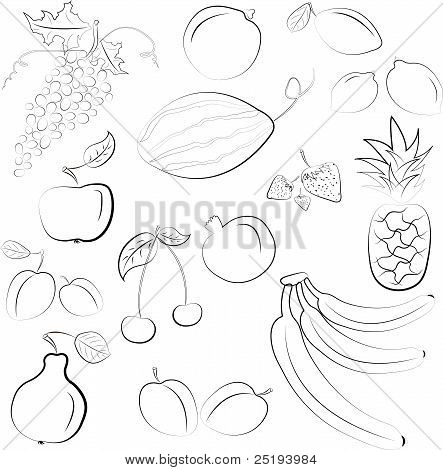 Vector Illustration - conjunto de frutas