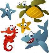 picture of sea-turtles  - vector animals set 9 - JPG