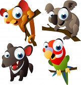 pic of opossum  - vector animal set 66 - JPG