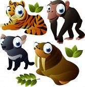 vector animal set 175: tiger, walrus, monkey, tasmanian devil