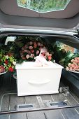 stock photo of hearse  - White casket covered with floral arrangements in a hearse - JPG