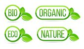 Organic, Natural, Bio, Eco Vector Labels. Eco, Bio, Organic, Nature Green Fresh Leaves Elements. Eco poster