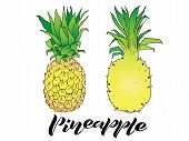 Vector Line Illustration Of Pineapple And Handwritten Lettering. Isolated Ananas For Label, Menu, Ic poster