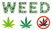 Weed Caption Collage Of Weed Leaves In Variable Sizes And Green Variations. Vector Flat Cannabis Sym poster