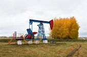stock photo of nonrenewable  - One pump jacks on a oil field - JPG