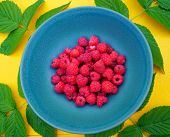 Plateful Of Fresh Finnish Raspberries Served On Blue Plate On Yellow Table With Green Raspberry Leaf poster