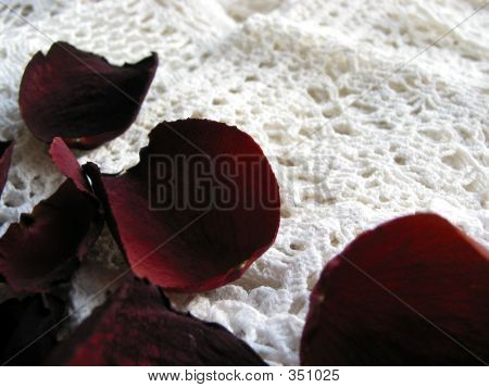 Vintage Lace With Dry Rose Petals