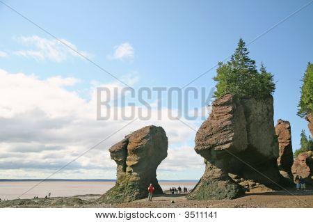 Rochas de Hopewell, New Brunswick