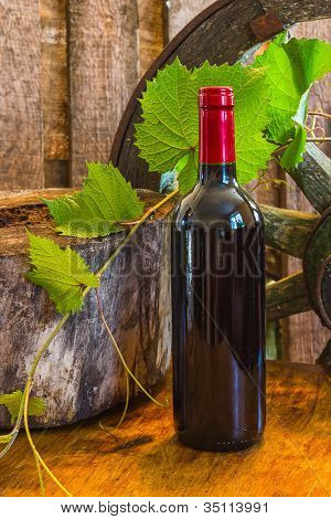 A Bottle Of Wine On The Background Of The Vine