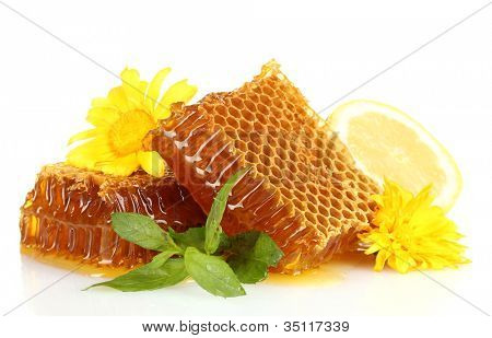 sweet honeycombs with mint, lemon and flowers isolated on white