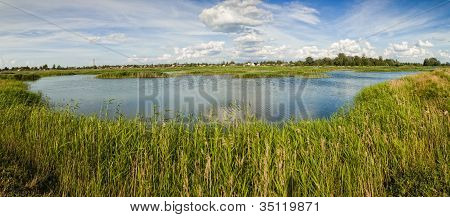 Rural Landscape Pond With Grass
