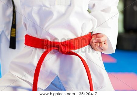 People in a gym in martial arts training exercising Taekwondo, the trainer has a black belt