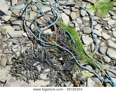 Seaside rope