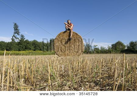 Bucolic Summer Field