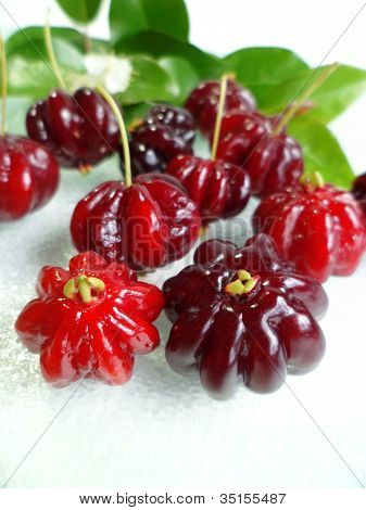 Surinam Cherry (Eugenia uniflora)